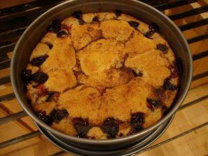 Baked Plum Torte - Greg Patent: The Baking Wizard