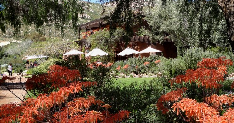 Greg's Story: Cooking and Baking at Rancho La Puerta, Mexico
