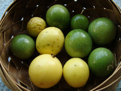 What Is Passion Fruit (Lilikoi)?